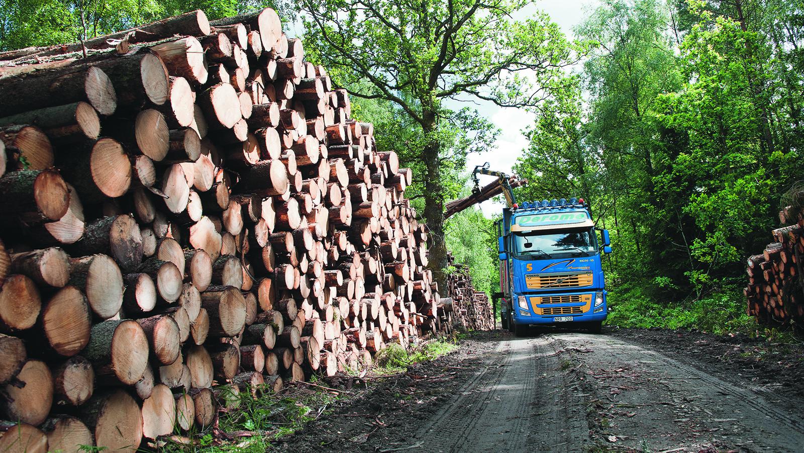 Minskade utslapp i skogsindustrin